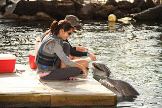 Destiny Valladares intteracting with a couple of dolphins